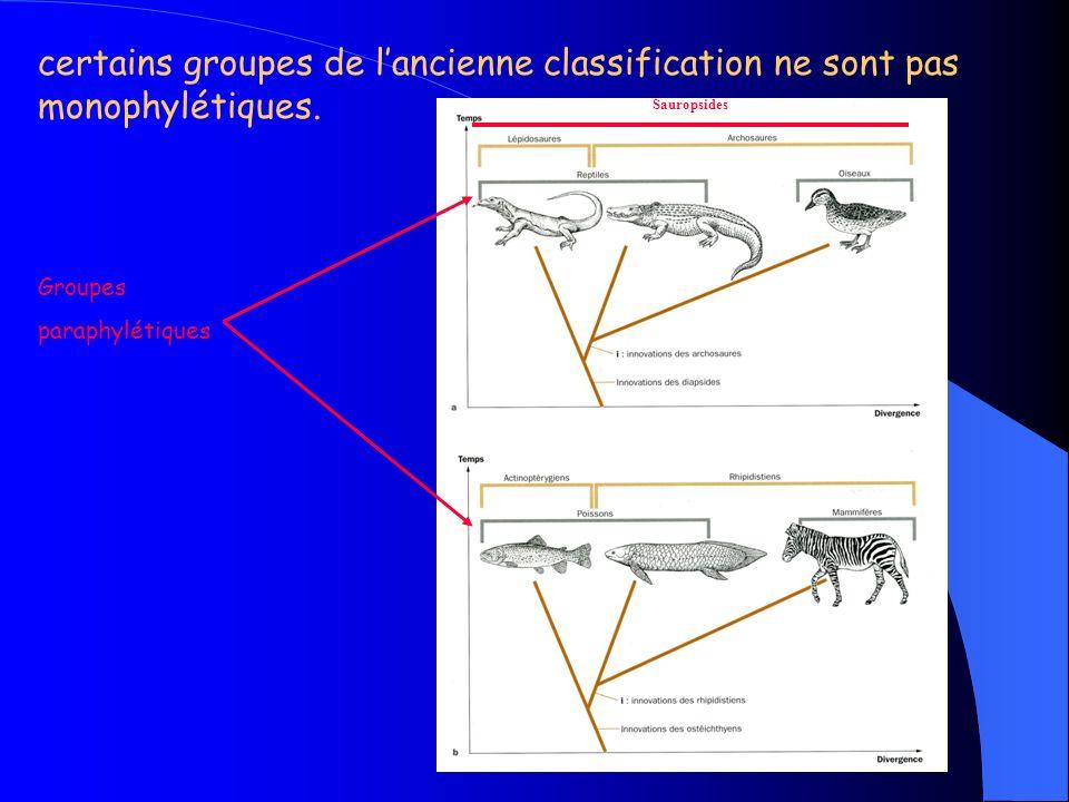certains groupes de l'ancienne classification ne sont pas monophylétiques.