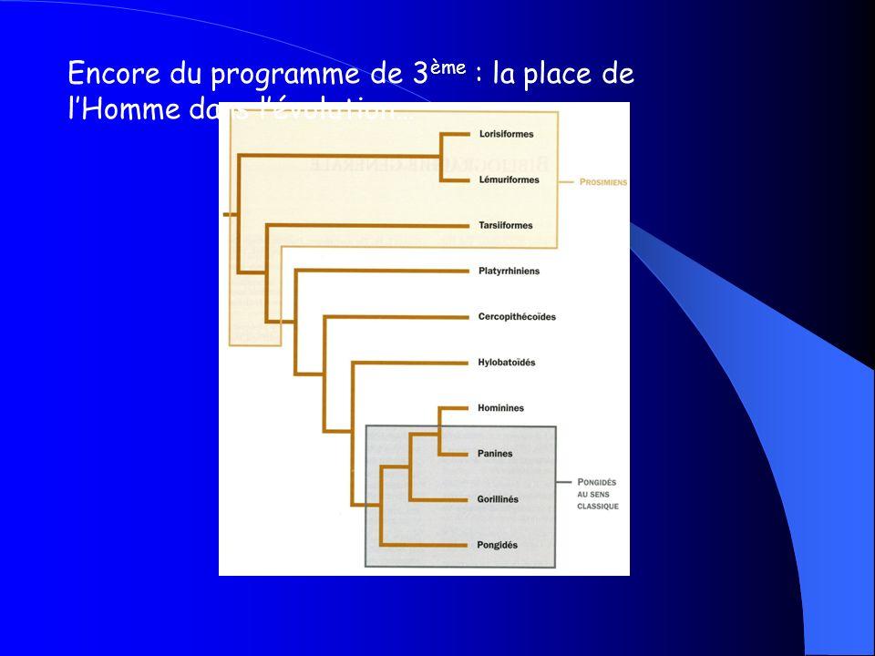 Encore du programme de 3ème : la place de l'Homme dans l'évolution…