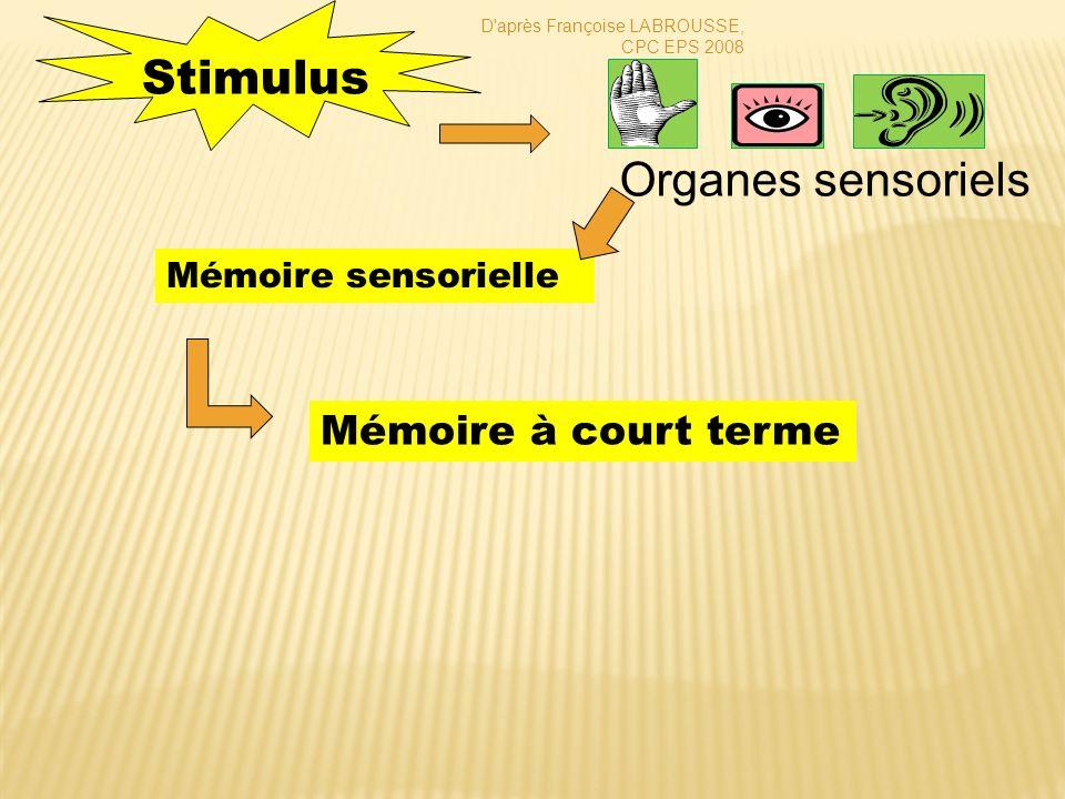 Stimulus Organes sensoriels Mémoire à court terme Mémoire sensorielle