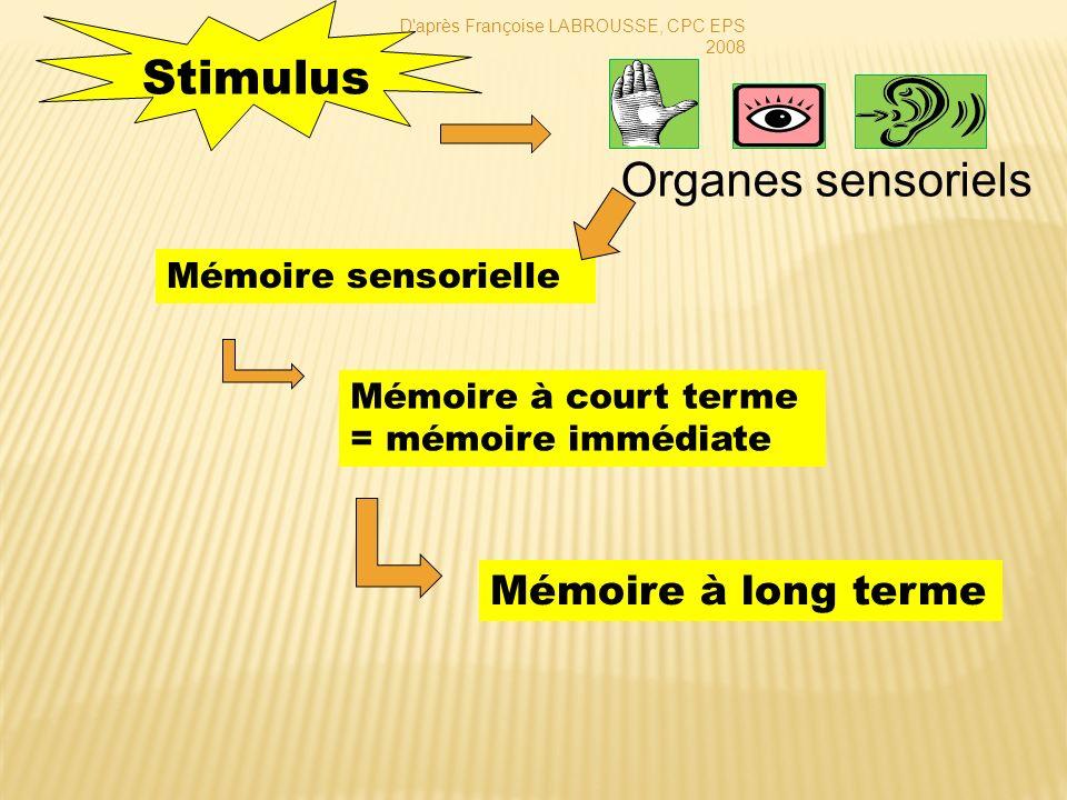 Stimulus Organes sensoriels Mémoire à long terme Mémoire sensorielle