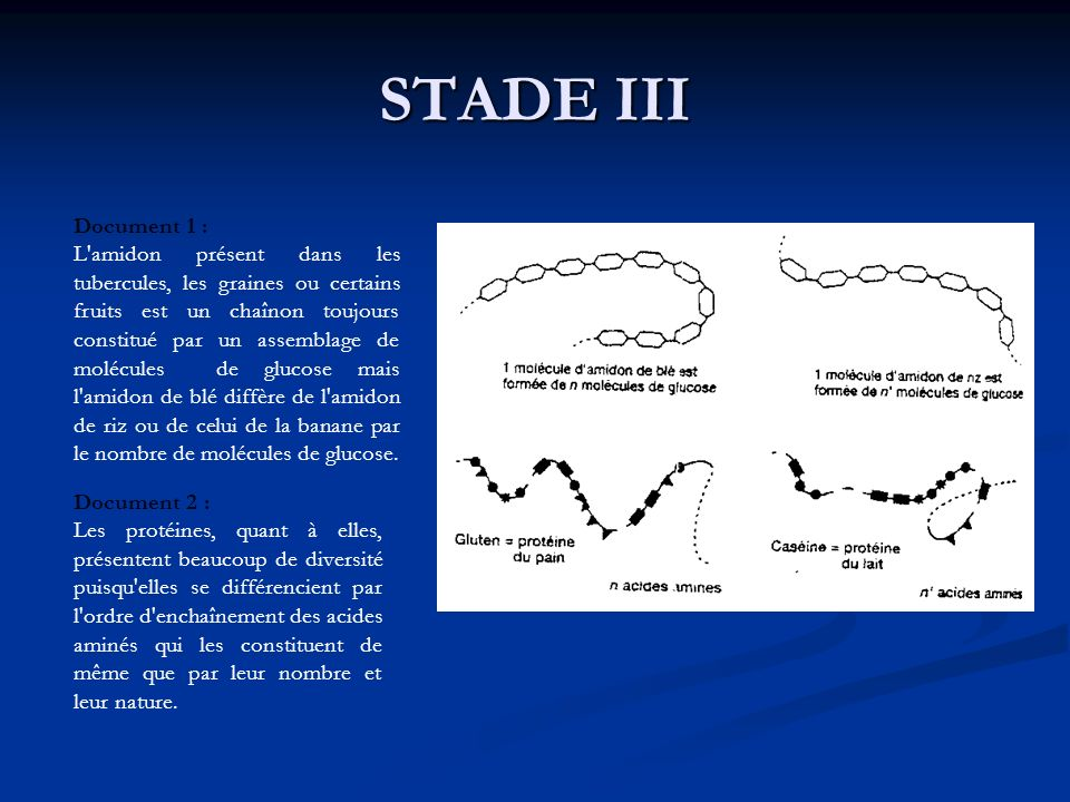 STADE III Document 1 :
