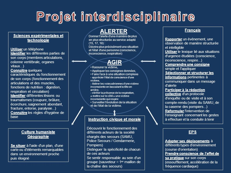 Projet interdisciplinaire