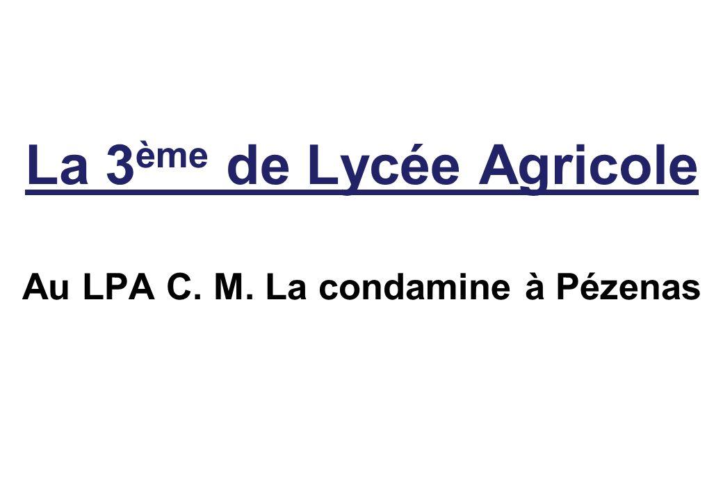 La 3ème de Lycée Agricole Au LPA C. M. La condamine à Pézenas