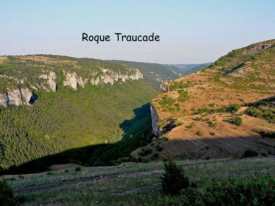 Roque Traucade