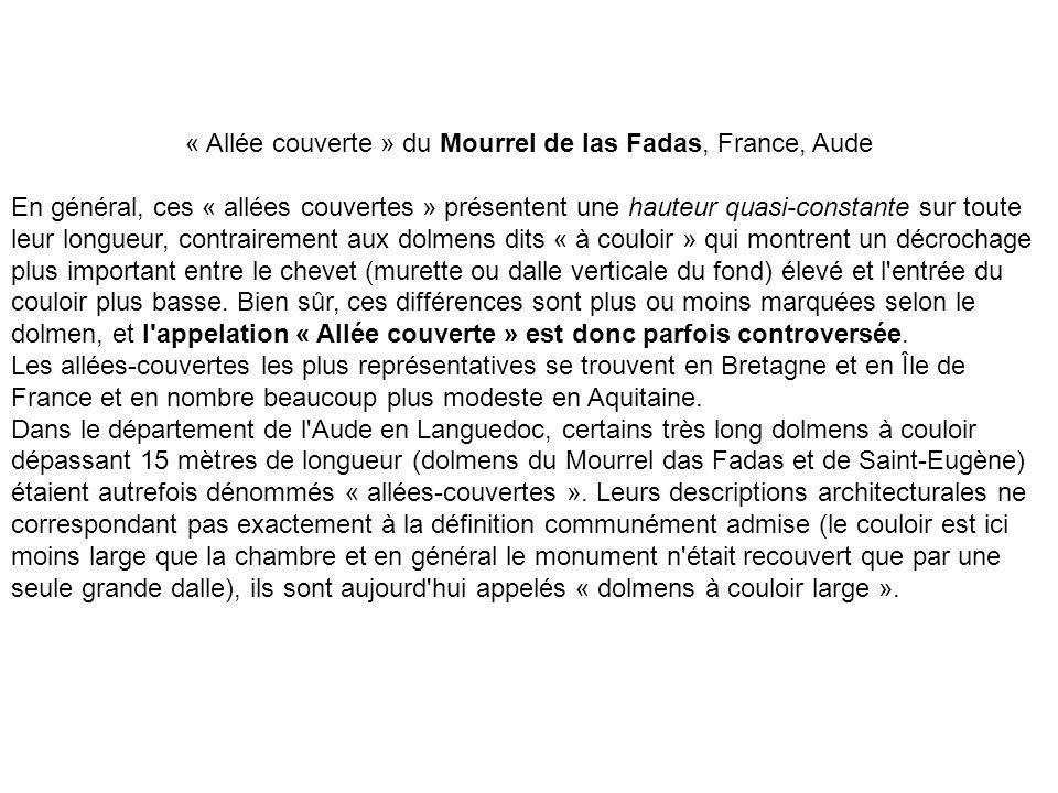 « Allée couverte » du Mourrel de las Fadas, France, Aude