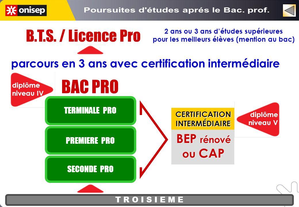 BAC PRO B.T.S. / Licence Pro Poursuites d études aprés le Bac. prof.