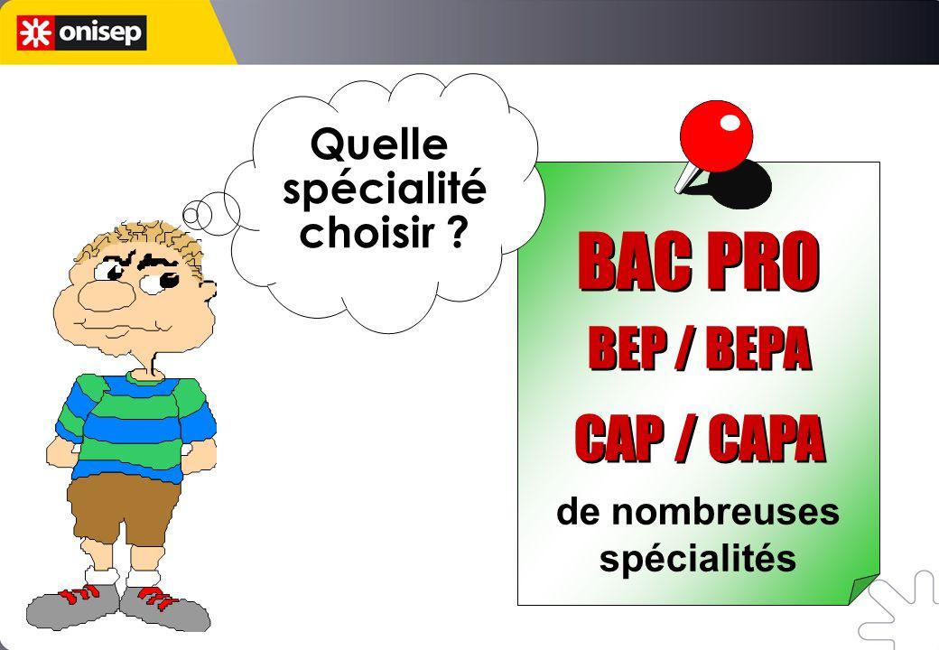 BAC PRO CAP / CAPA BEP / BEPA Quelle spécialité choisir