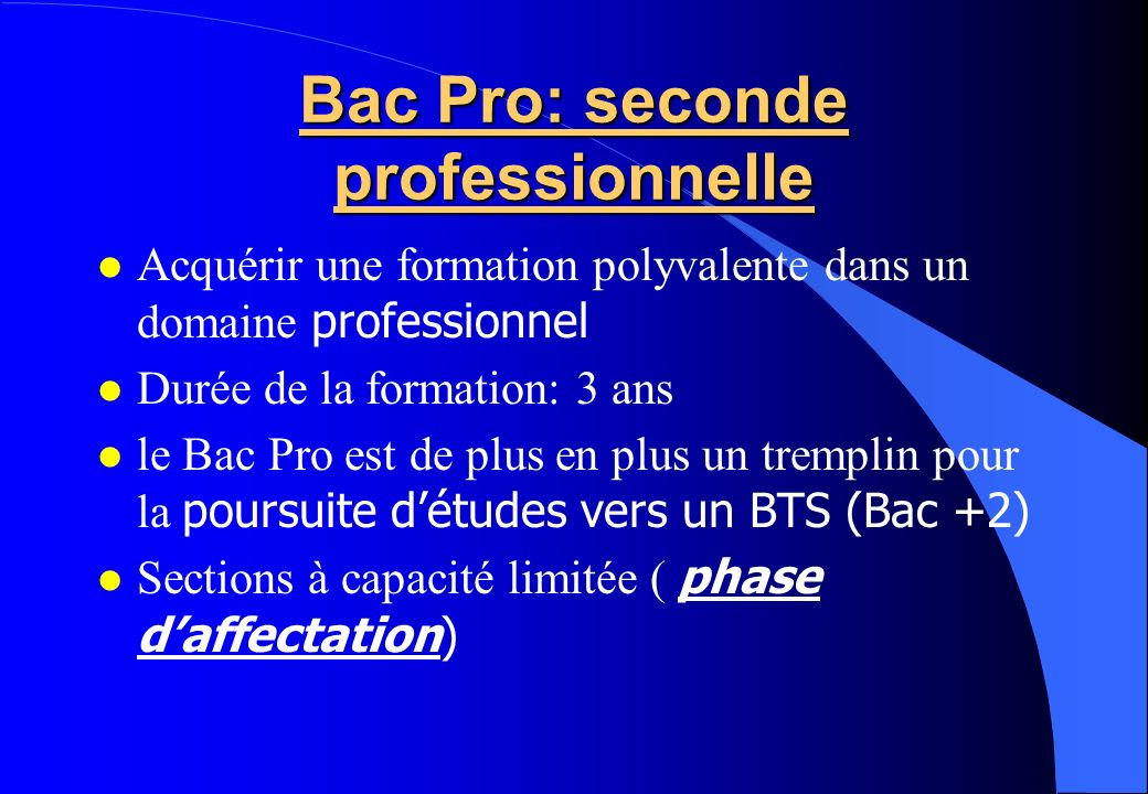 Bac Pro: seconde professionnelle