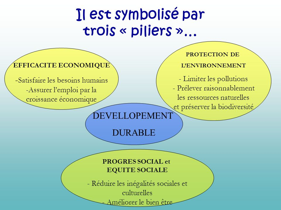 Il est symbolisé par trois « piliers »… EFFICACITE ECONOMIQUE