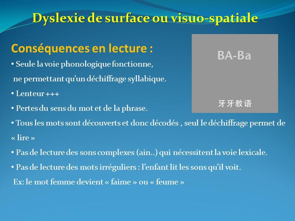 Dyslexie de surface ou visuo-spatiale