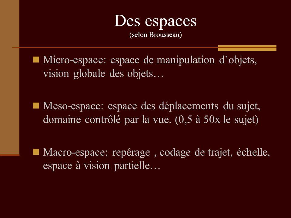 Des espaces (selon Brousseau)