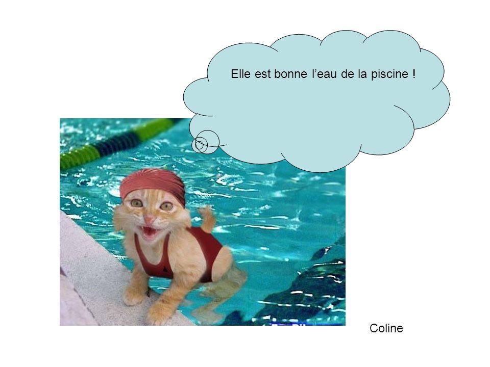 Elle est bonne l'eau de la piscine !