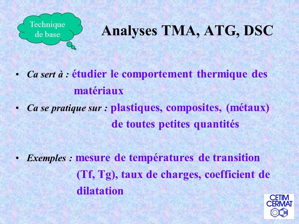Analyses TMA, ATG, DSC matériaux de toutes petites quantités