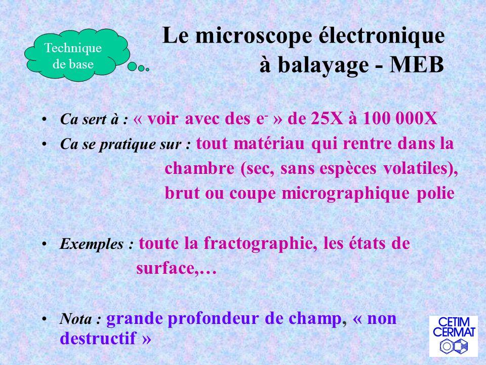 Le microscope électronique à balayage - MEB