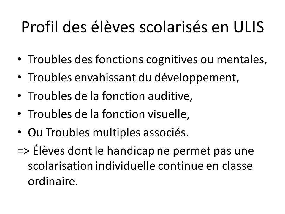 Profil des élèves scolarisés en ULIS