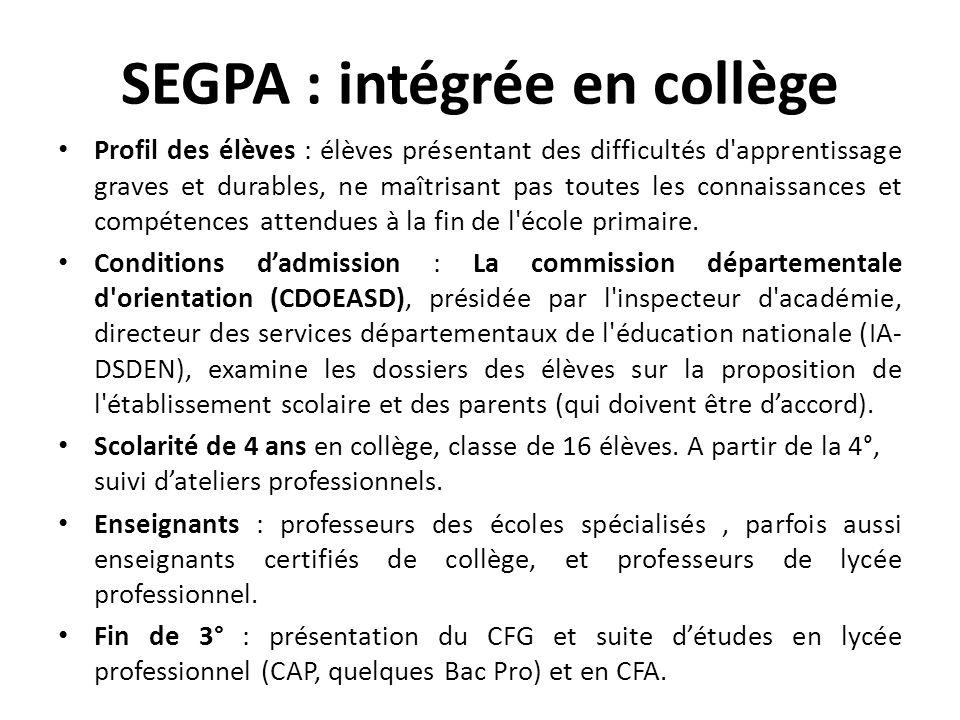 SEGPA : intégrée en collège