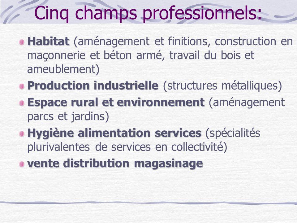 Cinq champs professionnels: