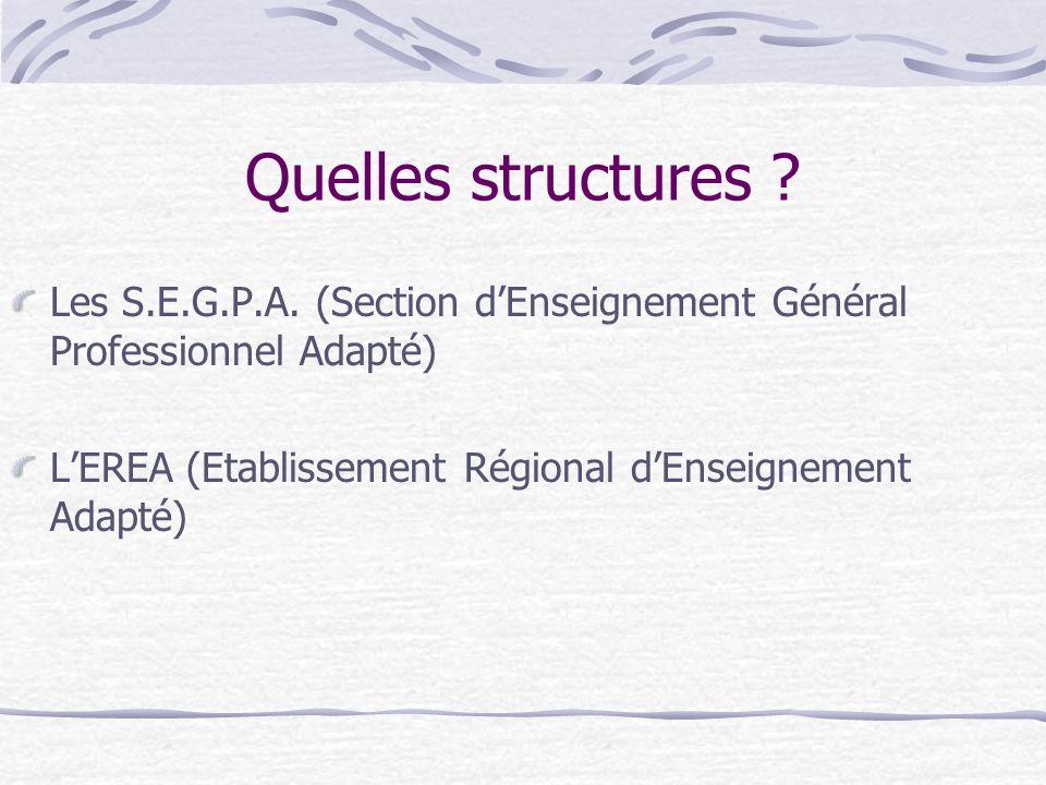 Quelles structures . Les S.E.G.P.A.