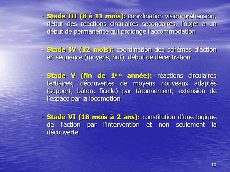 Stade III (8 à 11 mois): coordination vision-préhension, début des réactions circulaires secondaires, l'objet a un début de permanence qui prolonge l'accommodation