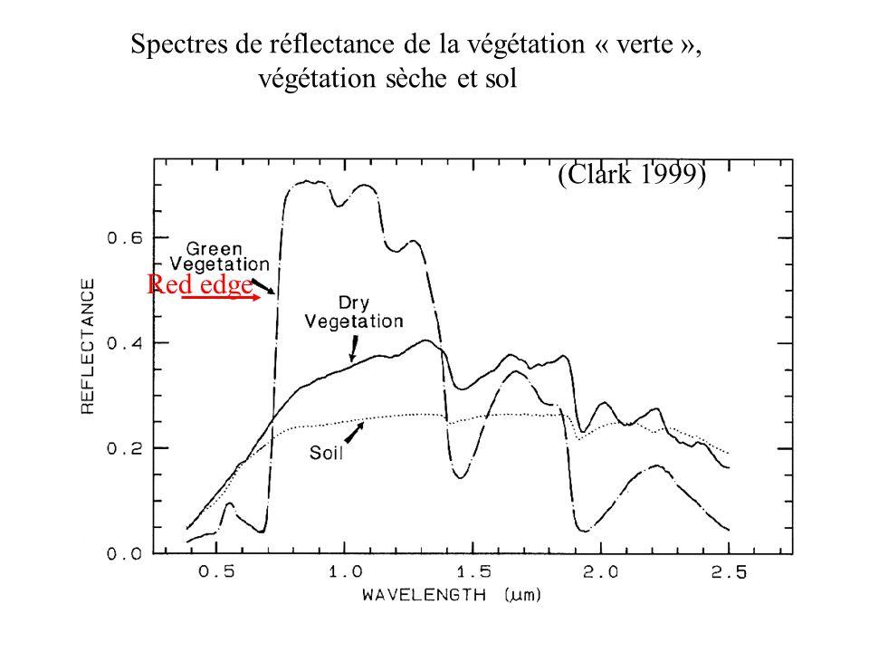 Spectres de réflectance de la végétation « verte »,