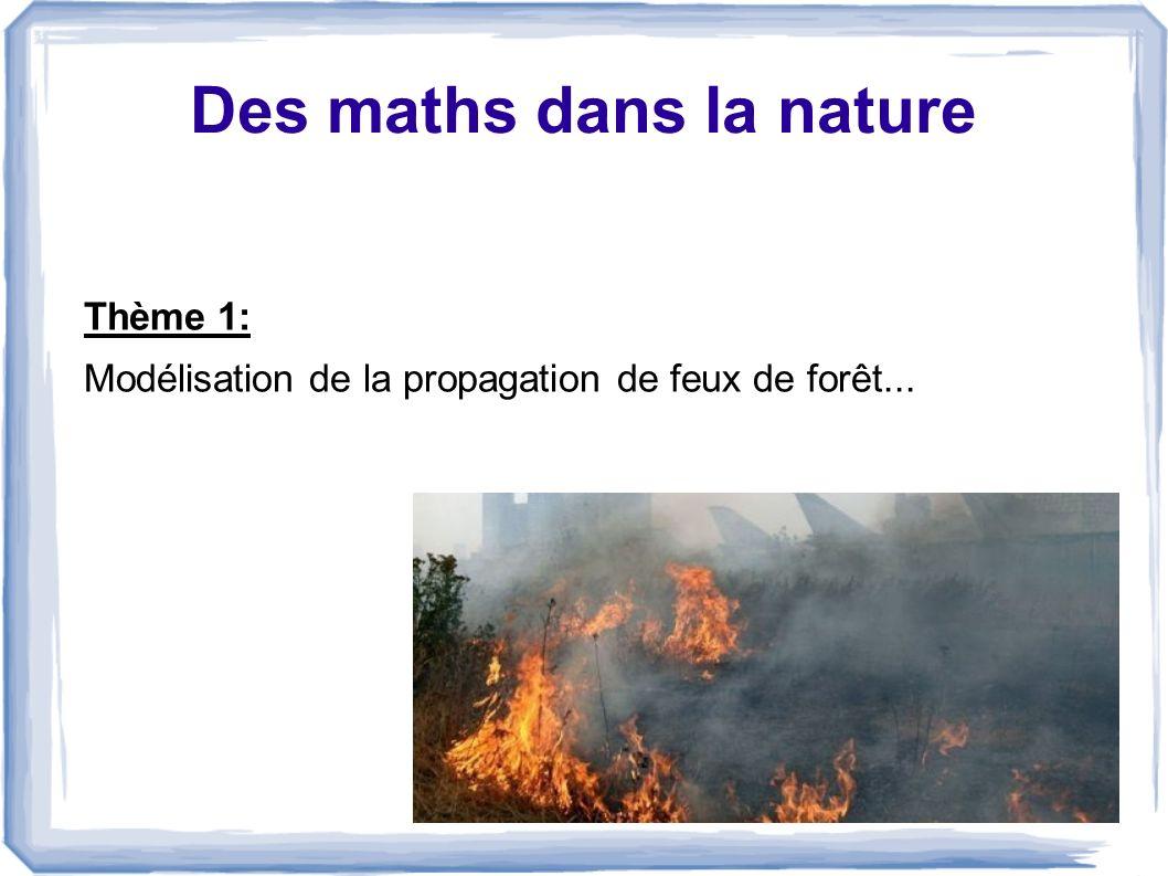 Des maths dans la nature