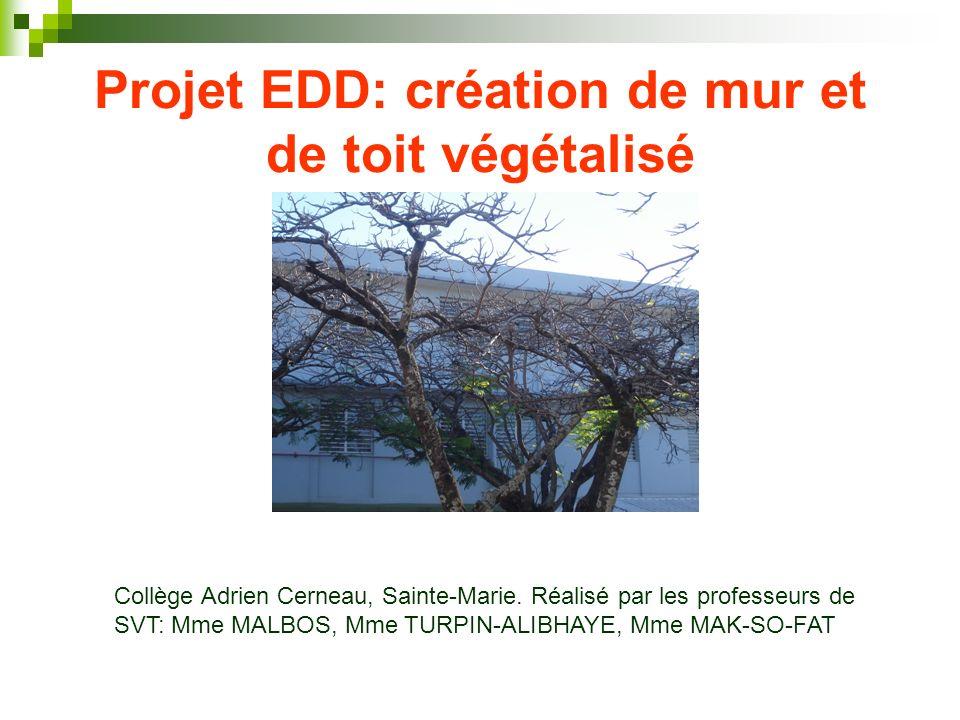 Projet EDD: création de mur et de toit végétalisé