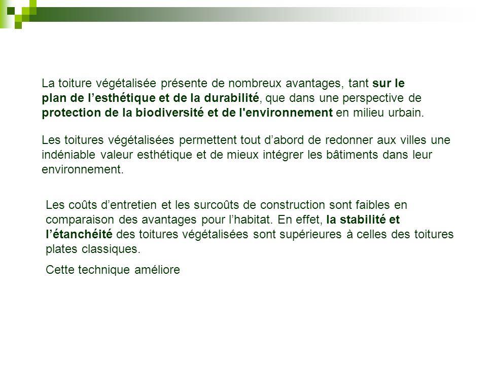 La toiture végétalisée présente de nombreux avantages, tant sur le plan de l'esthétique et de la durabilité, que dans une perspective de protection de la biodiversité et de l environnement en milieu urbain.