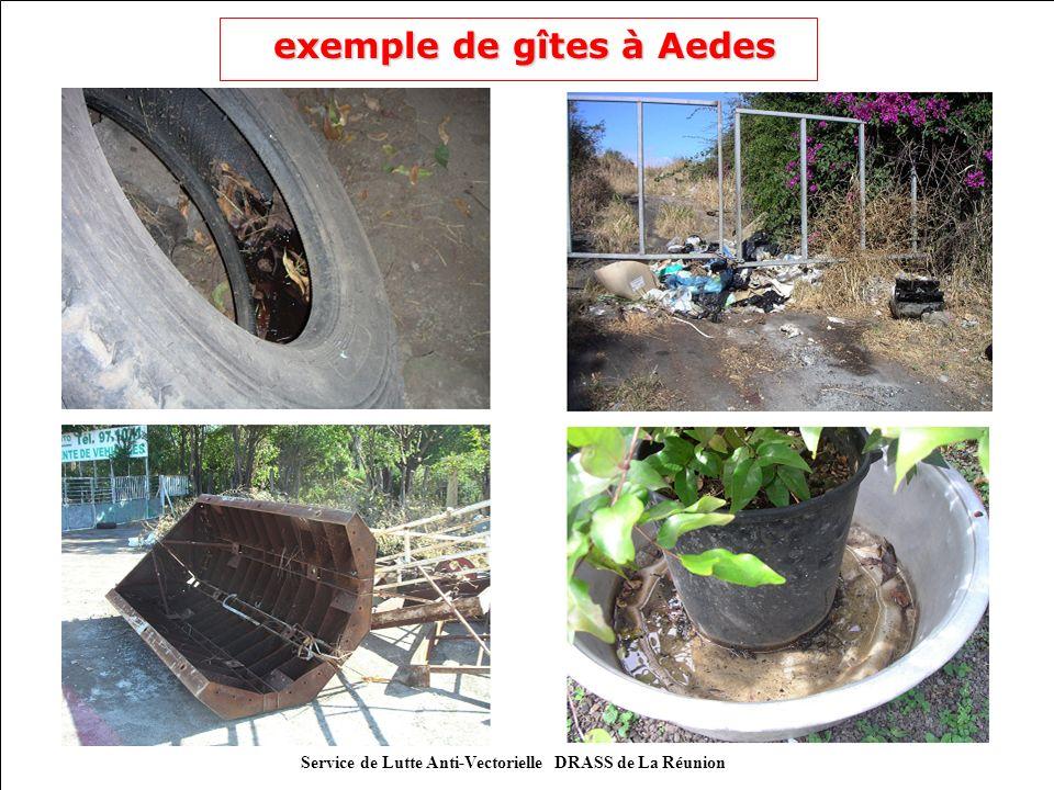 exemple de gîtes à Aedes