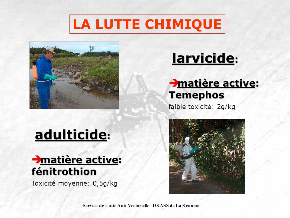 LA LUTTE CHIMIQUE larvicide: matière active: Temephos adulticide: