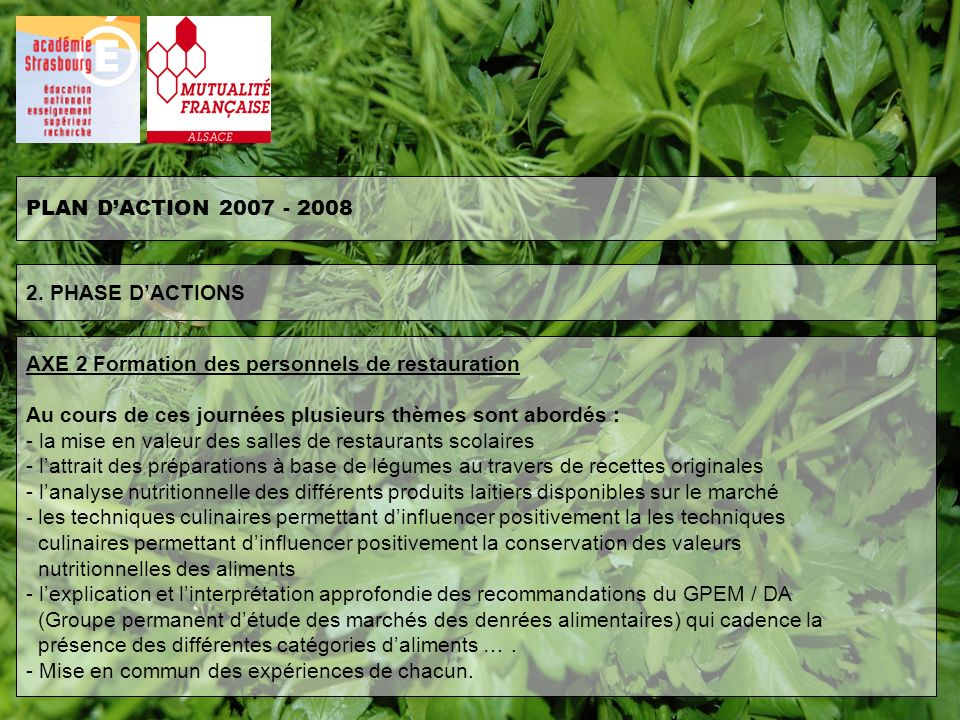 PLAN D'ACTION 2007 - 2008 2. PHASE D'ACTIONS. AXE 2 Formation des personnels de restauration.