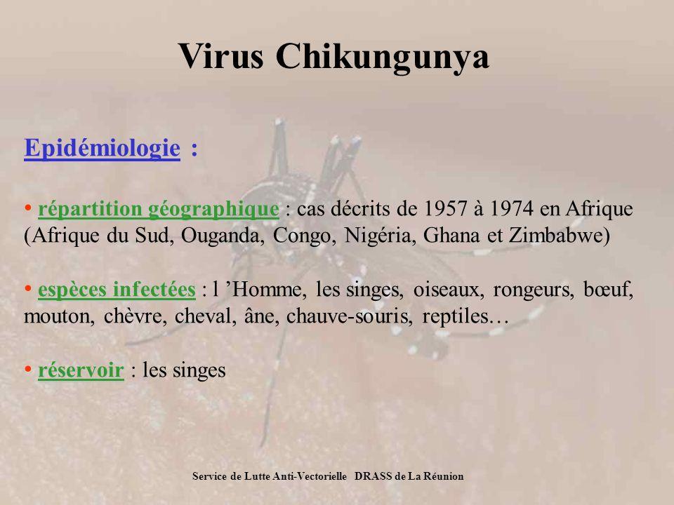 Virus Chikungunya Epidémiologie :