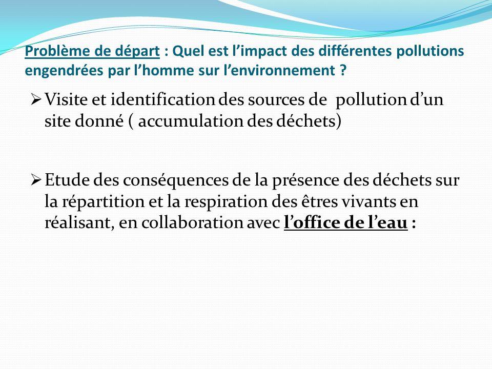 Problème de départ : Quel est l'impact des différentes pollutions engendrées par l'homme sur l'environnement