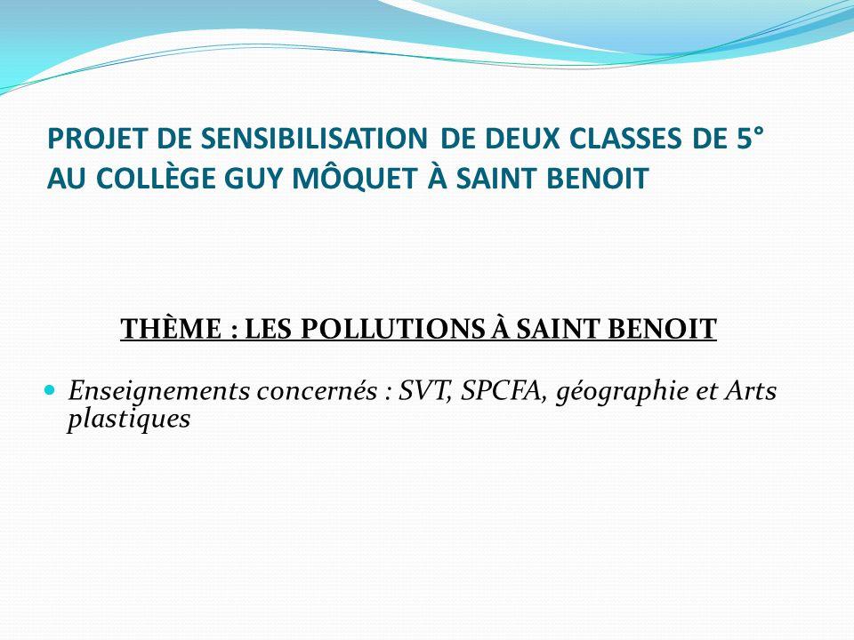 THÈME : LES POLLUTIONS À SAINT BENOIT