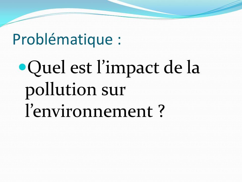 Quel est l'impact de la pollution sur l'environnement