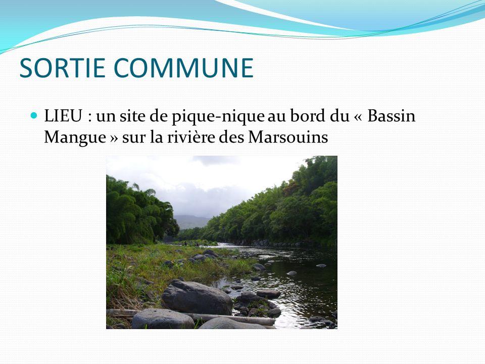 SORTIE COMMUNE LIEU : un site de pique-nique au bord du « Bassin Mangue » sur la rivière des Marsouins.