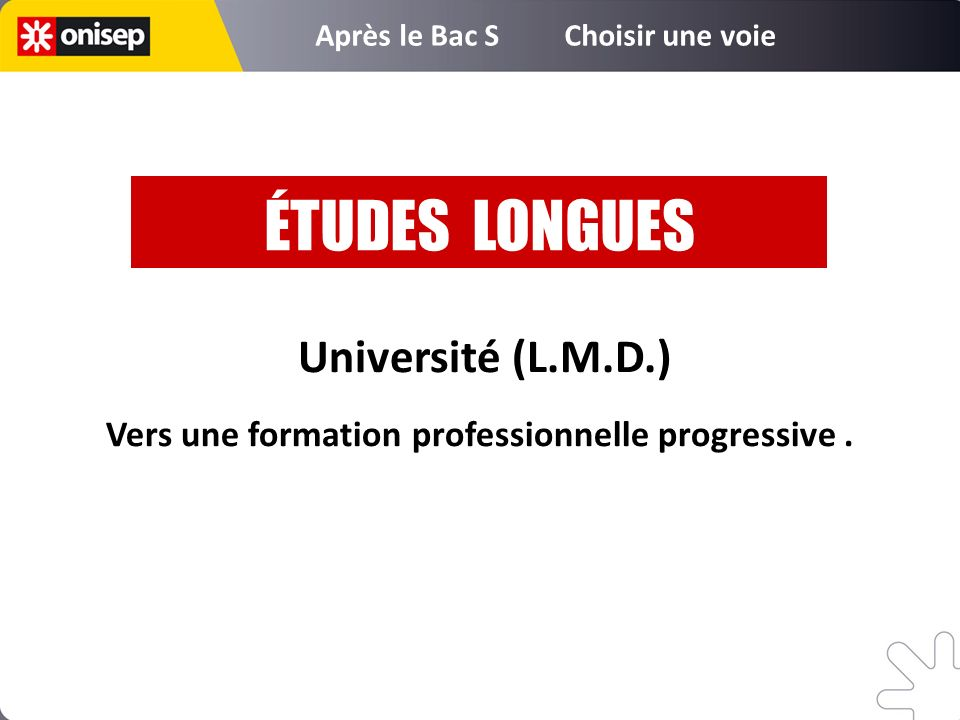 ÉTUDES LONGUES Université (L.M.D.)