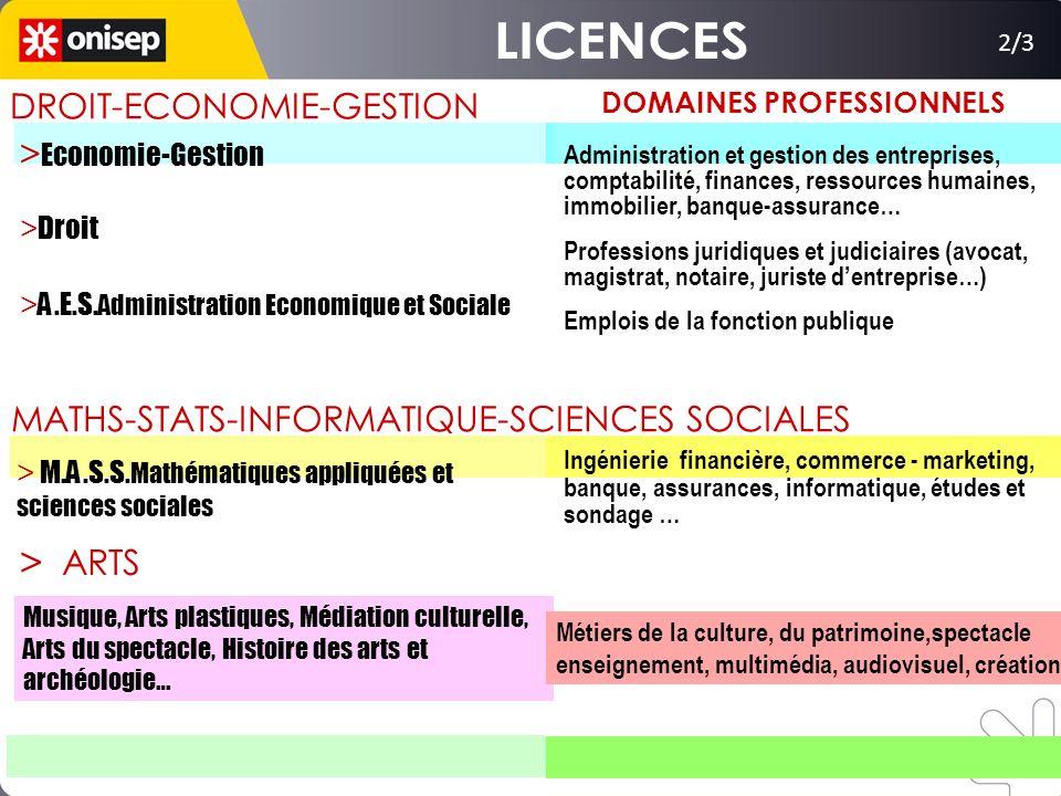 LICENCES > DROIT-ECONOMIE-GESTION >Economie-Gestion