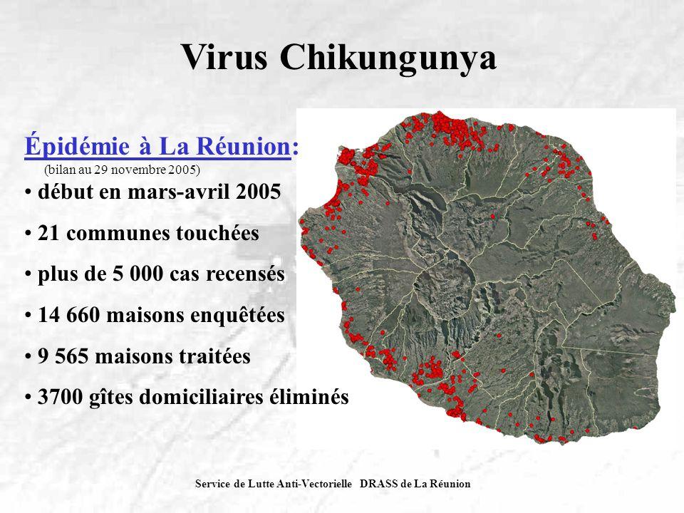 Virus Chikungunya Épidémie à La Réunion: début en mars-avril 2005