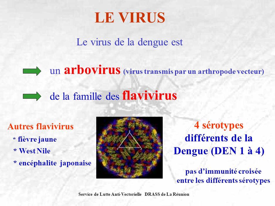 LE VIRUS Le virus de la dengue est
