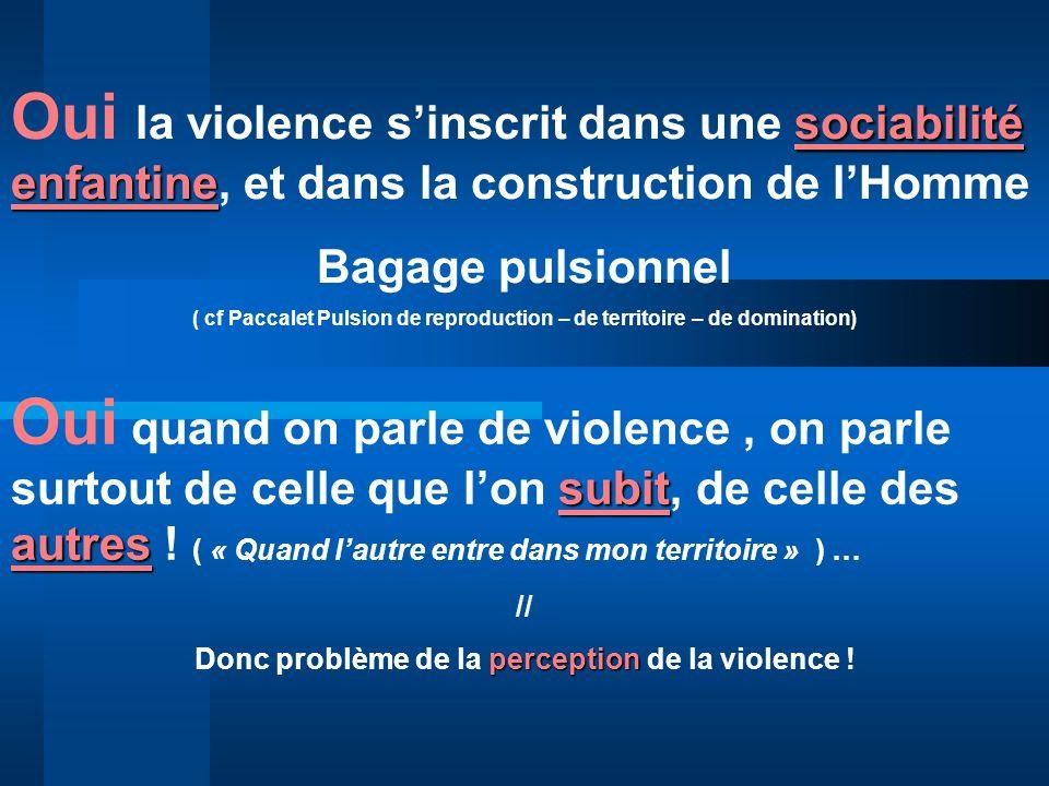 Oui la violence s'inscrit dans une sociabilité enfantine, et dans la construction de l'Homme