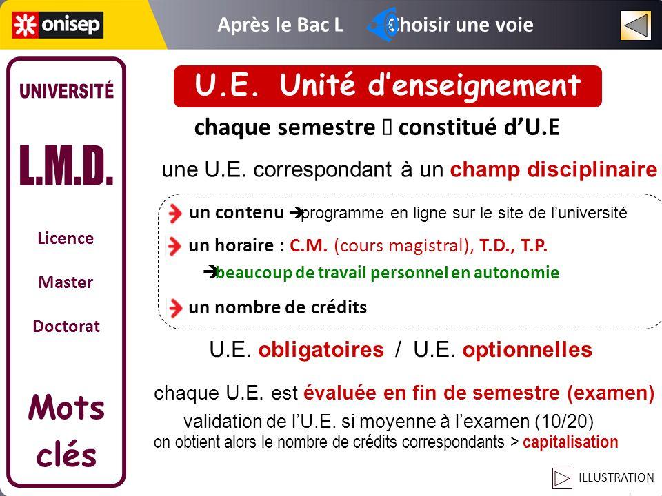 U.E. Unité d'enseignement
