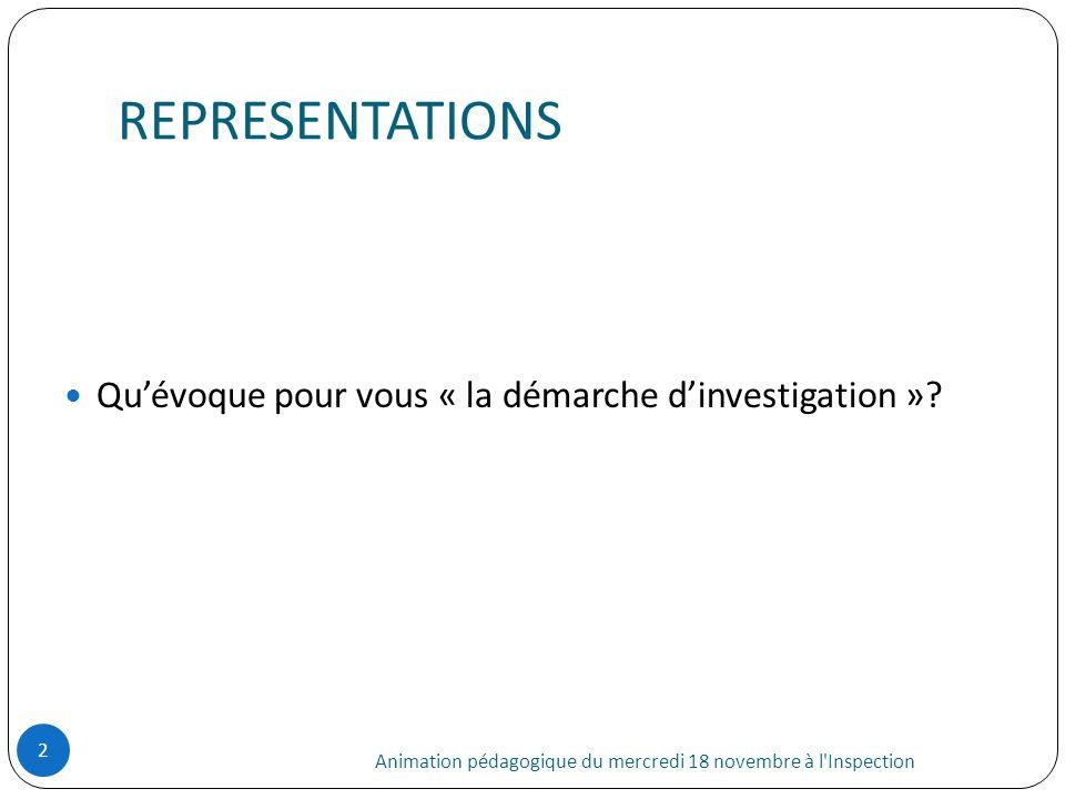 REPRESENTATIONS Qu'évoque pour vous « la démarche d'investigation »