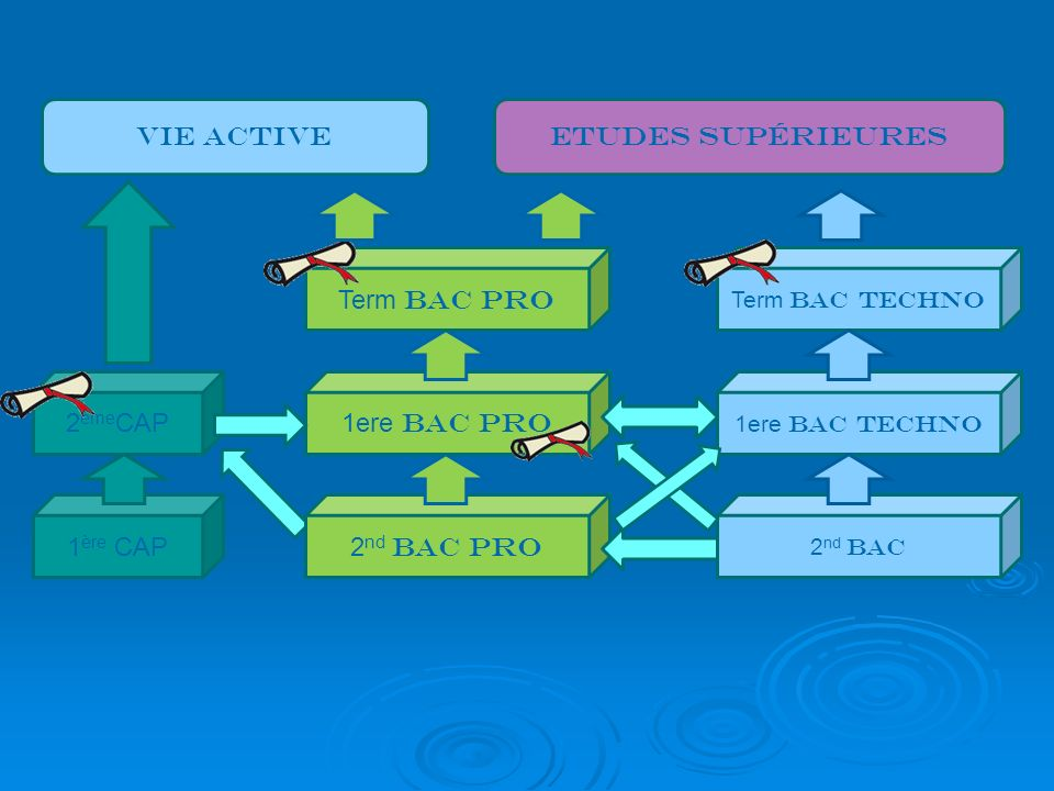 Vie active EtudeS supérieurES Term bac pro 2èmeCAP 1ere bac pro