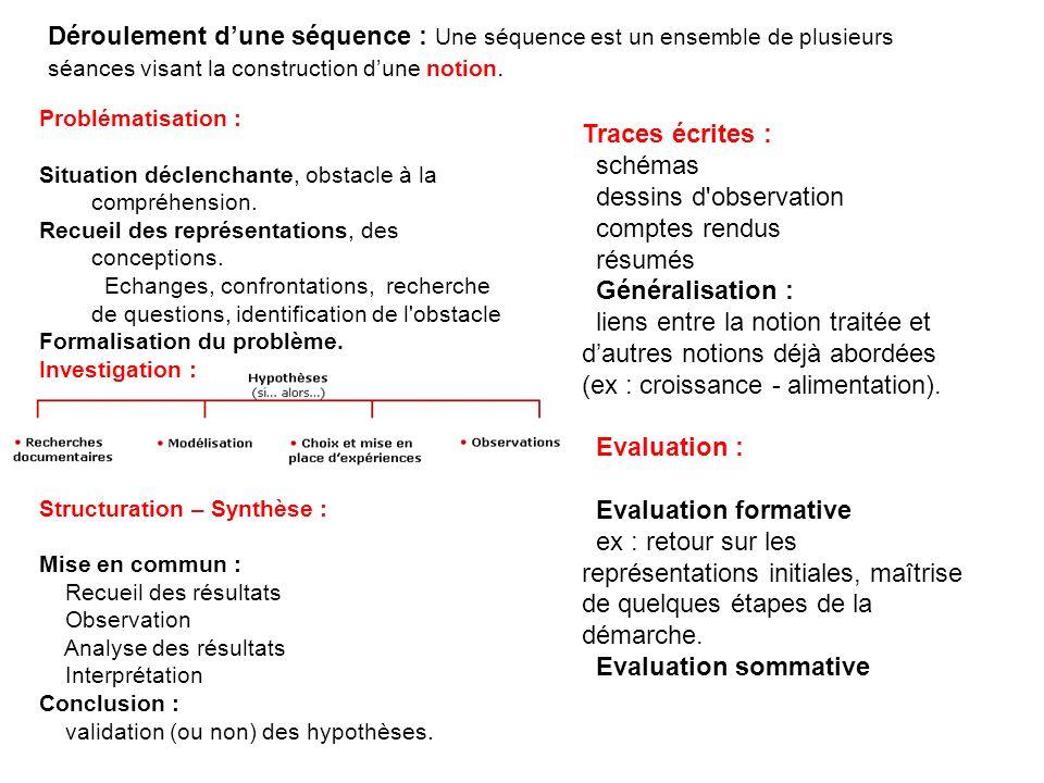 schémas dessins d observation comptes rendus résumés