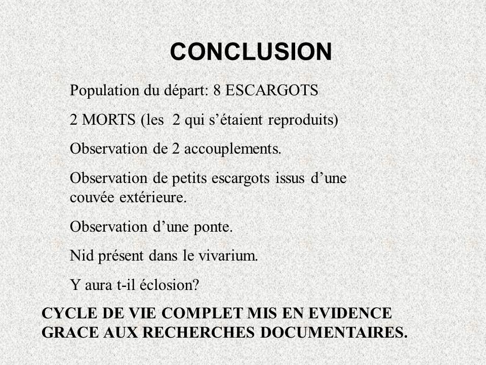 CONCLUSION Population du départ: 8 ESCARGOTS
