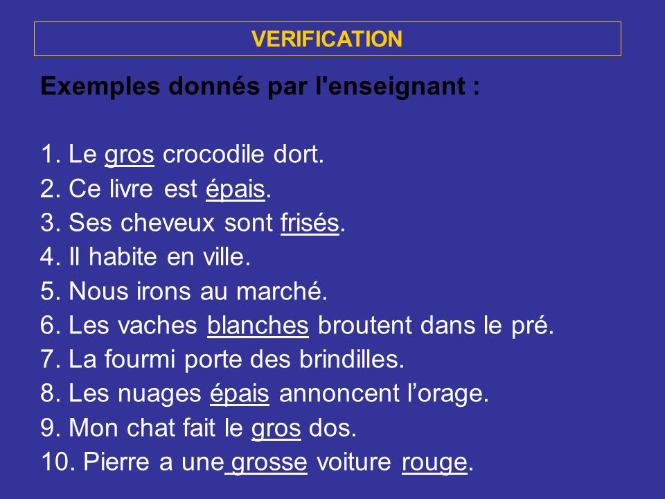 Exemples donnés par l enseignant : 1. Le gros crocodile dort.