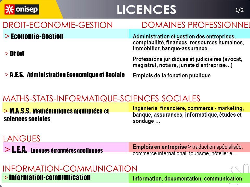 LICENCES > L.E.A. Langues étrangères appliquées