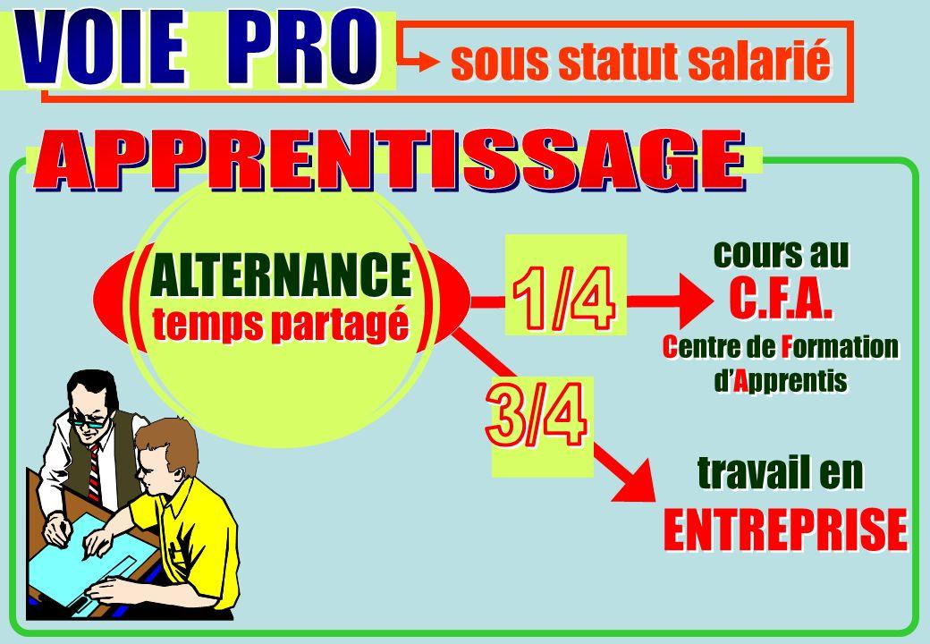 ALTERNANCE C.F.A. ENTREPRISE sous statut salarié VOIE PRO