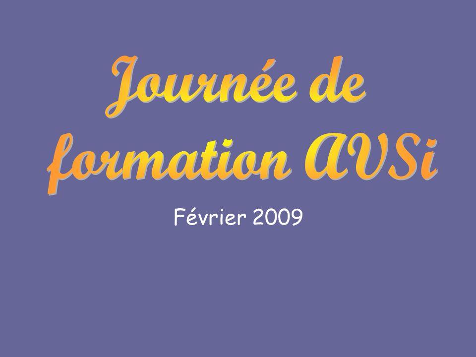 Journée de formation AVSi Février 2009
