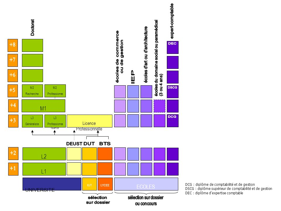 M1 L2 L1 ECOLES UNIVERSITE Doctorat DEUST DUT BTS